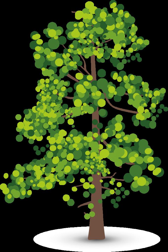 clipart-gum-tree-13